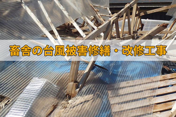 台風被害を受けた畜舎