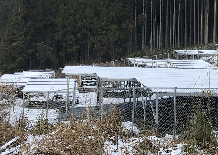 雪の積もった太陽光発電所